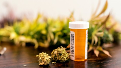 Is Cannabis the Best Medicine for Pain?