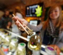 How Do Activists in Michigan Feel About the Rollout of Adult-Use Marijuana Sales?