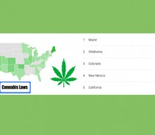 Top 5 States Searching For Cannabis Laws In 2020